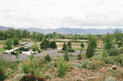 5 Bartley Ranch Site 3 Spring 2015 (low)