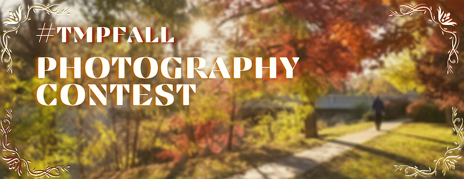 Final fall photo contest  banner.png