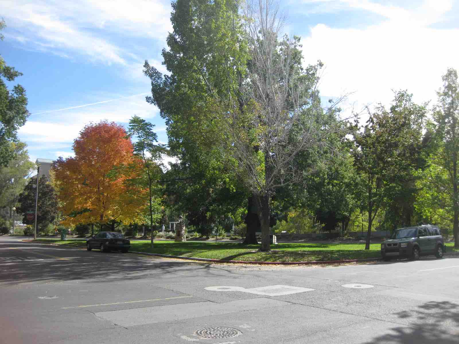 4 Lundsford Park Site 2 Fall 2014 (low)