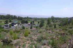 3 Bartley Ranch Site 3 Summer 2014 (low)