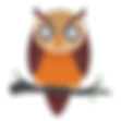 314d25aec35fdf7c57476c6cba8c2319-owl-bir