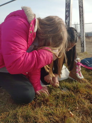 Image: Two 2nd grade girls looking for arthropods at their park with the Student Stewards Program.