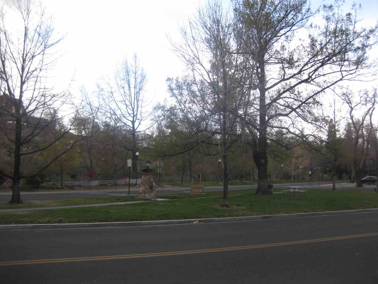 6 Lundsford Park Site 1 Spring 2015 (low)