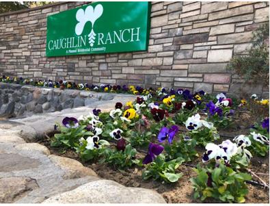 Modern Caughlin Ranch Community