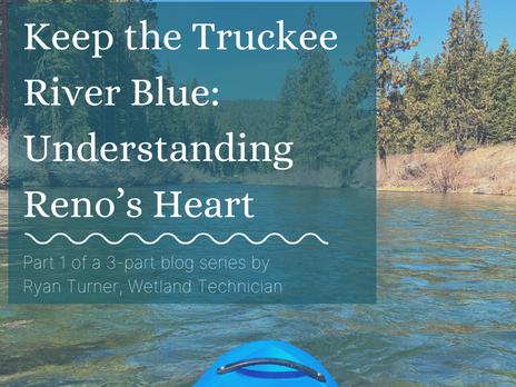 Keep the Truckee River Blue: Understanding Reno's Heart