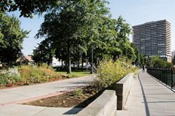1 Bicentennial Park Site 3 Autumn 2015 (low)
