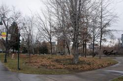 2 Bicentennial Park Site 1 Winter 2015 (low)