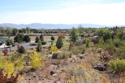 6 Bartley Ranch Site 3 Fall 2015 (low)
