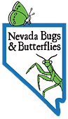 Nevada Bugs & Butterflies tall COLOR (1)-page-001_edited.png