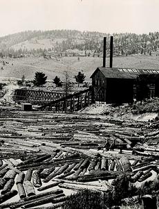 Verdi Lumber Company