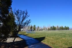 2 Virginia Foothills Site 3 Spring 2014 (Low)