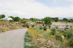 5 Bartley Ranch Site 1 Spring 2015 (low)