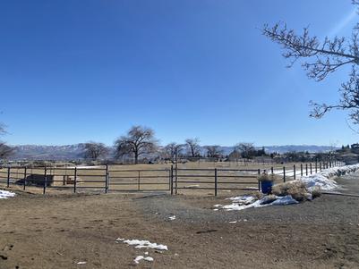 Horseman's Park