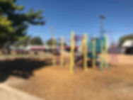Moana Park and Stadium Playground .jpg