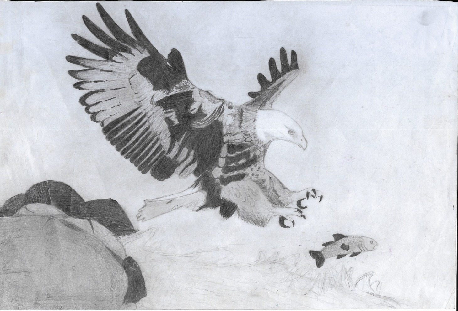 emily sketch 1