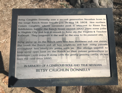 Betsy Caughlin Donnelly