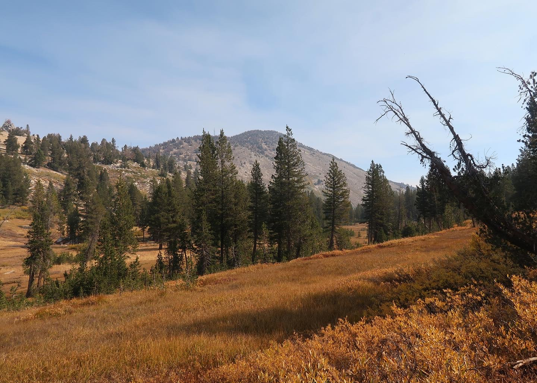 Cara Schaefer- Tahoe Meadows