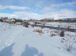 1 Bartley Ranch Site 1 Winter 2013 (low)