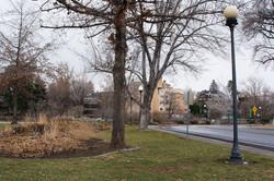 2 Bicentennial Park Site 2 Winter 2015 (low)