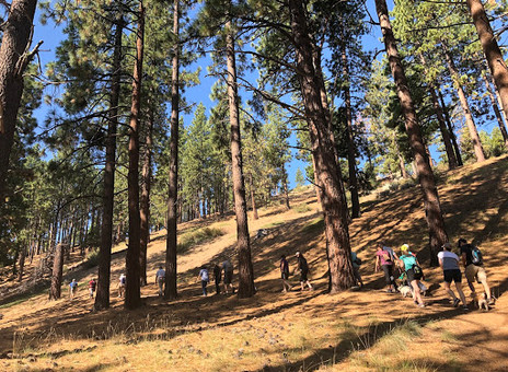 TMPF Recommends: Our Top 10 Favorite Trails