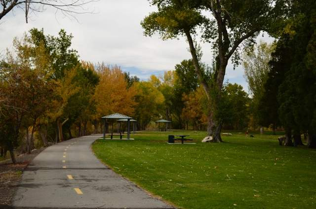 2 Cottonwood Park Site 2 Fall 2014 (low)