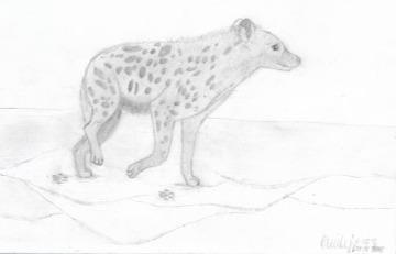 emily sketch 4