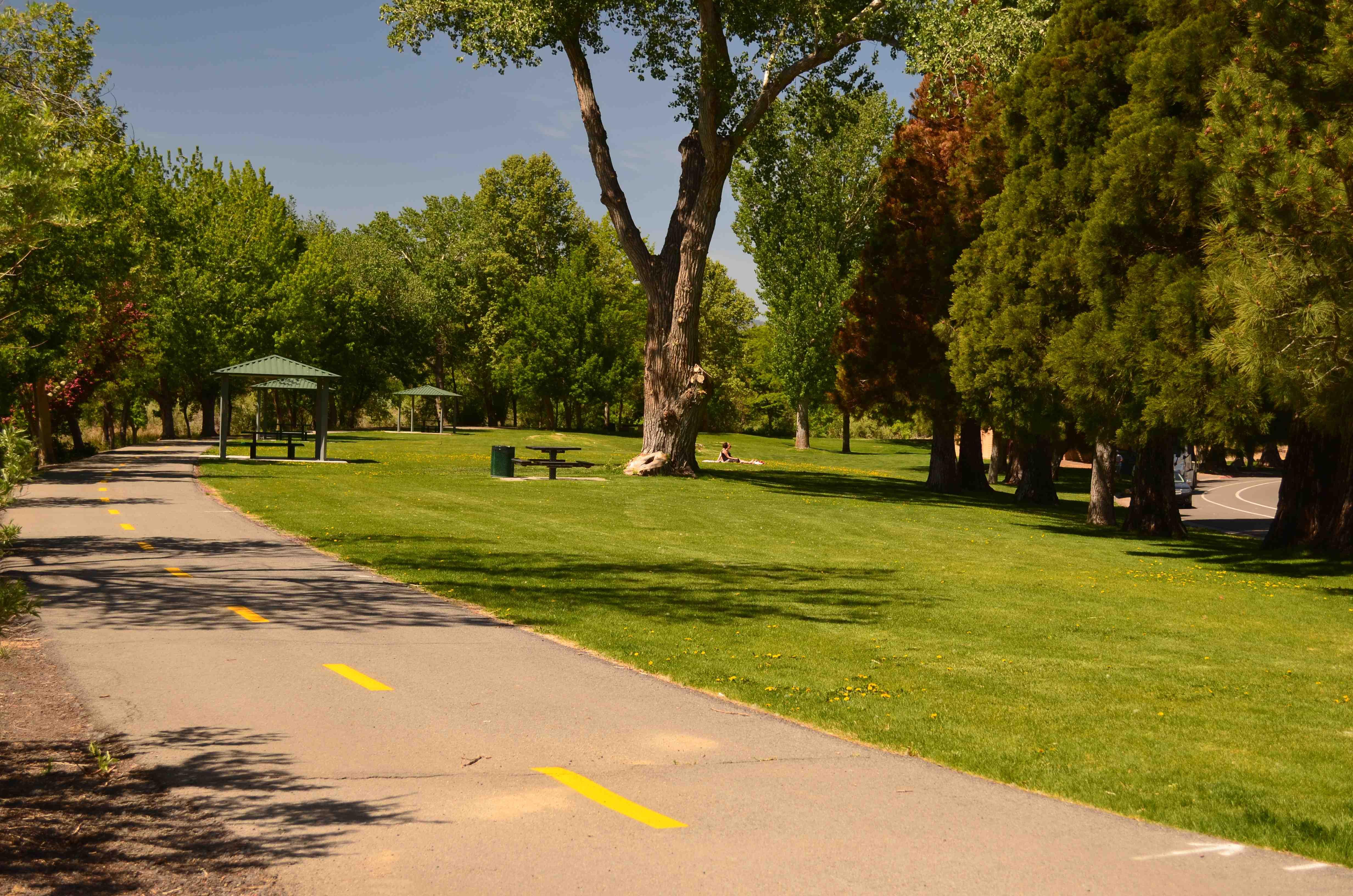 1 Cottonwood Park Site 2 Summer 2014 (low)