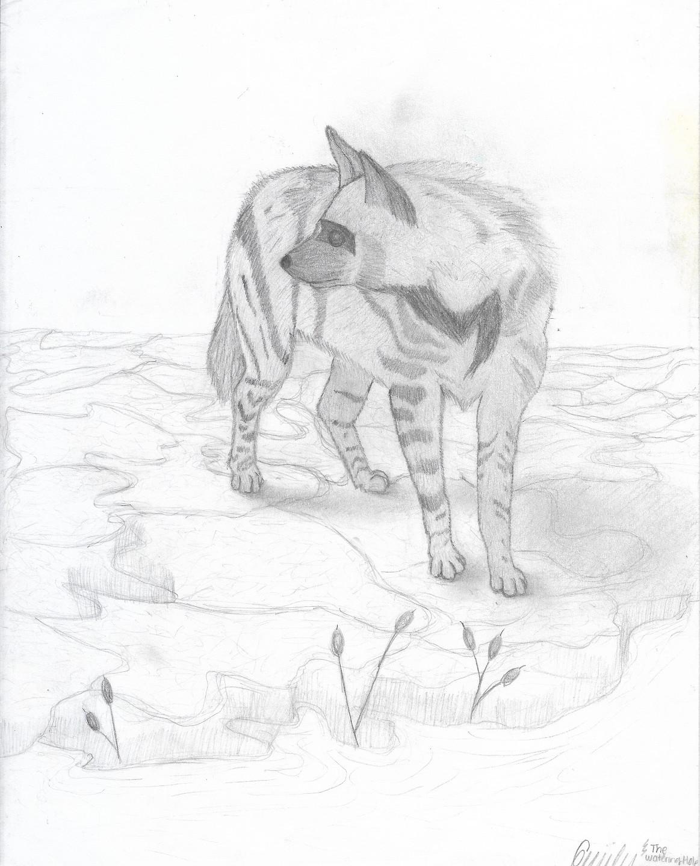 emily sketch 2