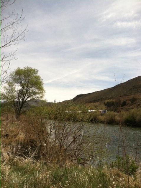 3 Lockwood Site 4 Spring 2015 (low)