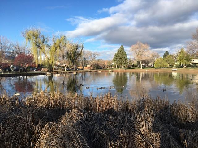 Lake Park Volutneers