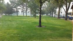 1 Pickett Park Site 2 Fall 2014 (low)