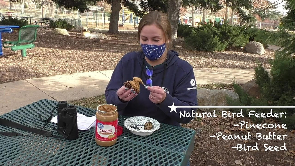A masked woman sits at a park table and spreads peanut butter on a pinecone to make a natural bird feeder