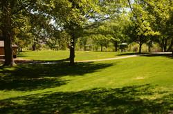 1 Cottonwood Park Site 1 Summer 2014 (low)