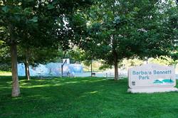 1 Barbara Bennett Site 1 Autumn 2015 (low)