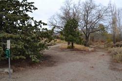1 White Creek Site 1 Fall 2013 (low)
