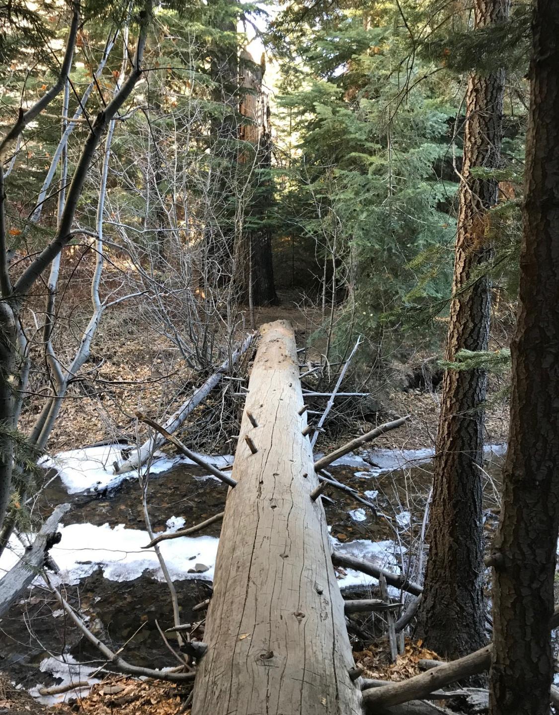 Don't fall in! (Hunter Creek)