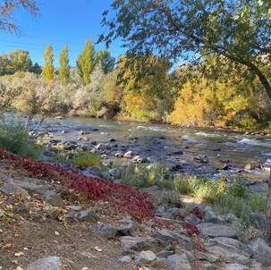 Prioritizing Equity in Our Parks: Doing More in 2021