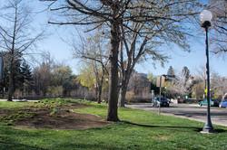 3 Bicentennial Park Site 2 March 2016 (low)