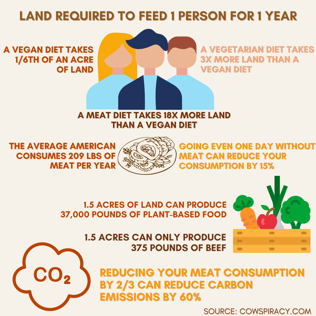 Meat-Free Infographic