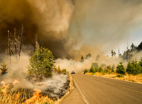Safety Tips for Wildfire Season