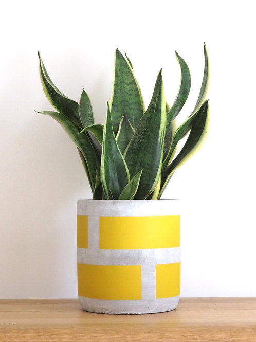 Medium Block Pot in Burnt Yellow