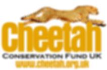 CCF UK -Logo.jpg