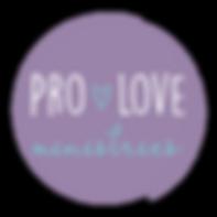 PLM logo.png