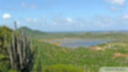 Bonaire National Park.jpg