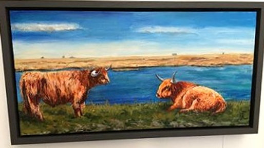 Highland Cattle at Oare- Painting