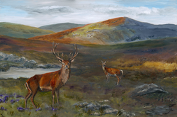 Life in the Highlands