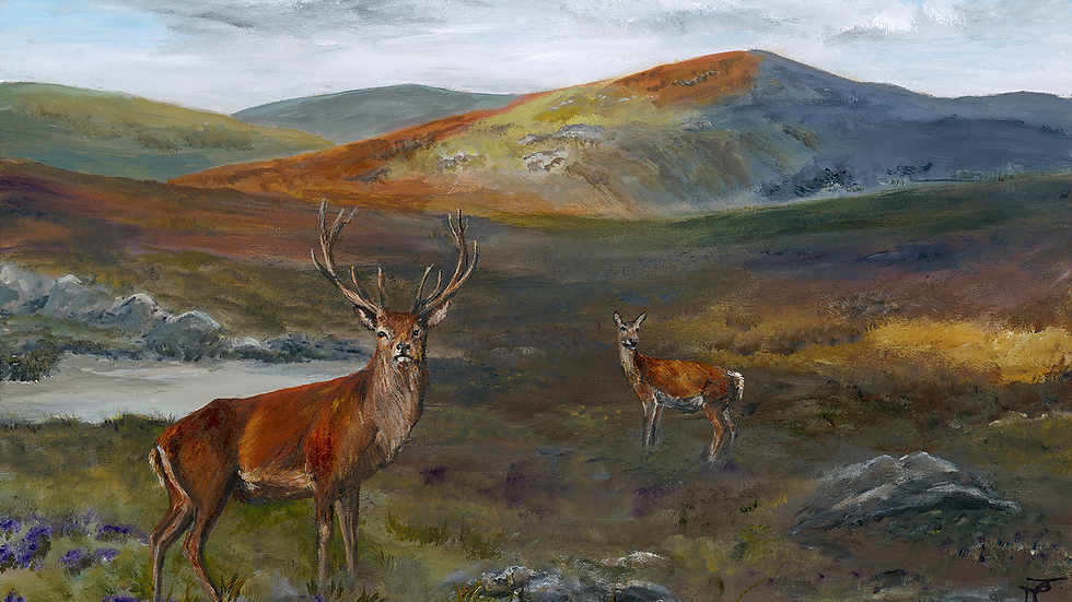 Life in the Highlands- Painting