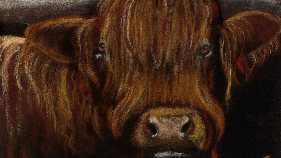 Fergus- Painting