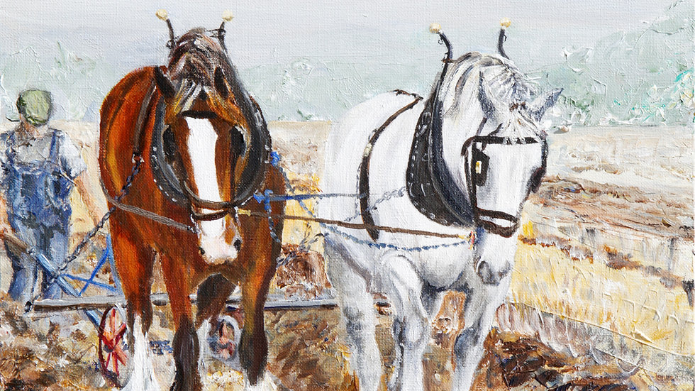 Clydesdale Ploughing- Card
