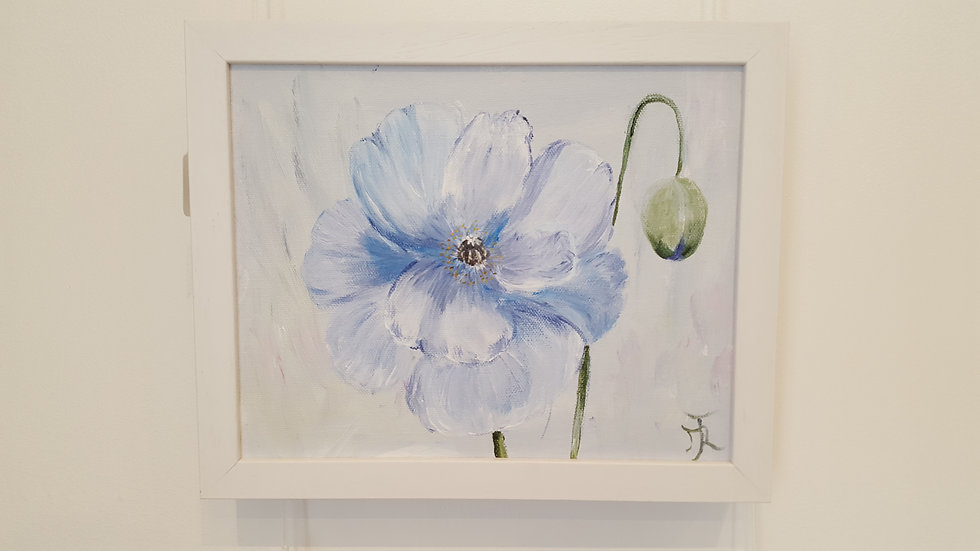 Icelandic Poppy- Painting